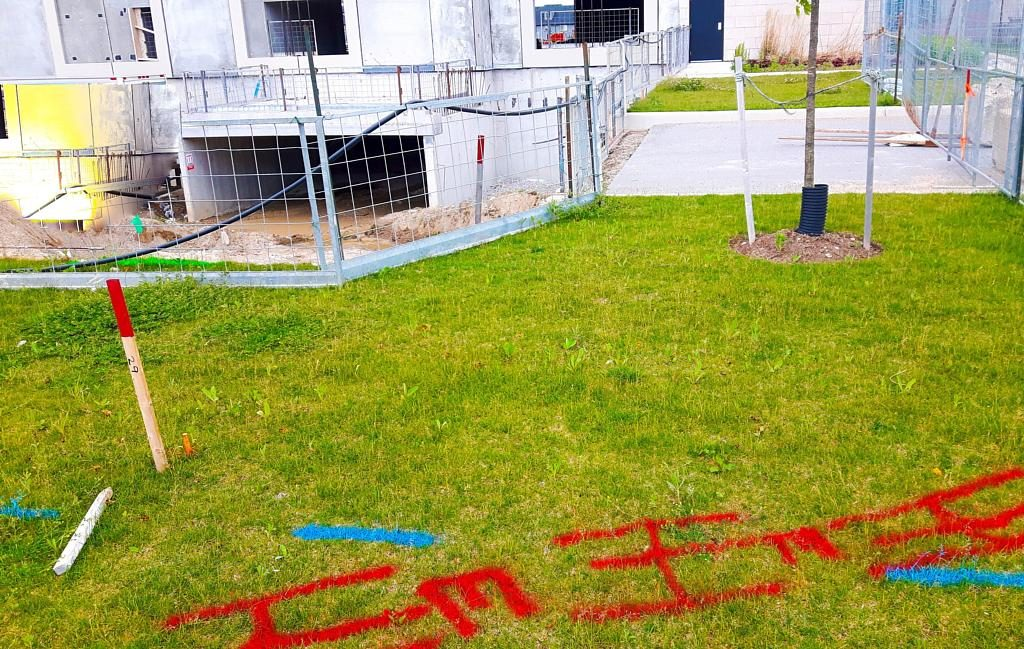 What does red and blue spray paint indicate? Red highlights buried electrical lines whereas blue marks potable water.