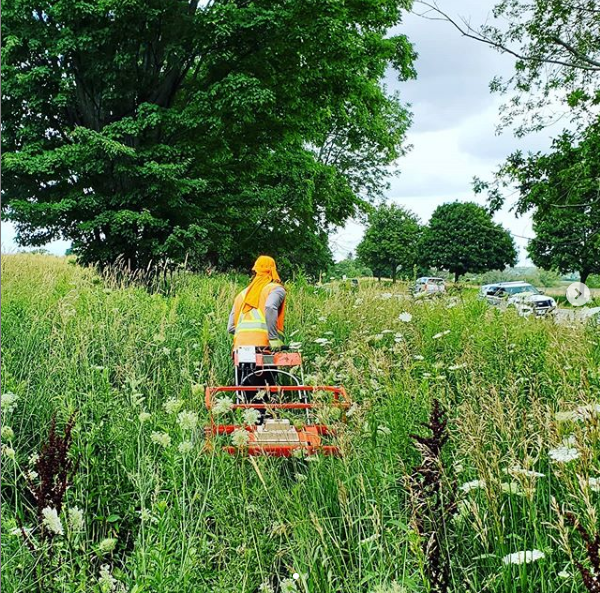 Geophysical Surveying in the thickets